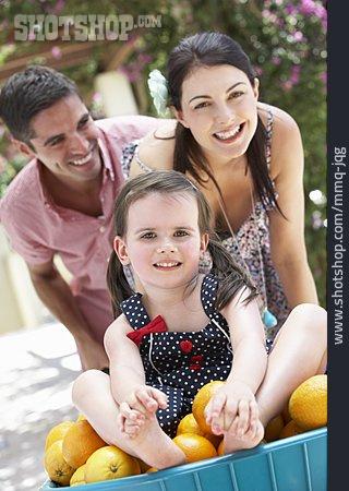 Family, Fruit Harvest, Orange Harvest