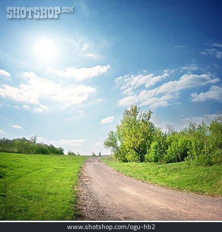 Landscape, Footpath, Summer