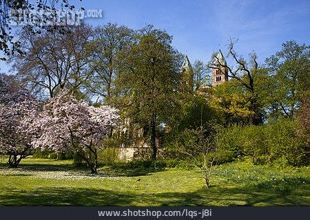 Speyer, Dompark