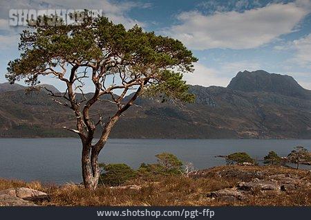 Scottish Culture, Scotland, Highlands