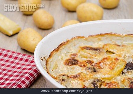 Potato Casserole, Potato Gratin