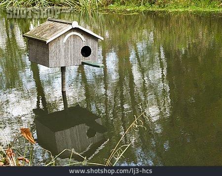 Nature, Bird House, Birds, Birdhouse