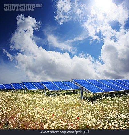 Solar Plant, Solar Energy