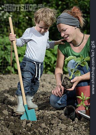 Gardening, Planting, Hoeing