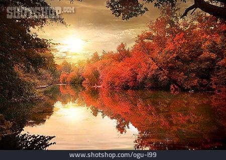 Nature, Autumn, River
