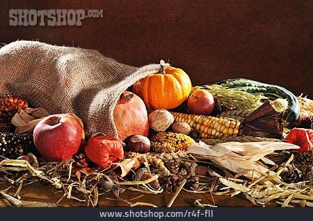 Harvest Festival, Harvest
