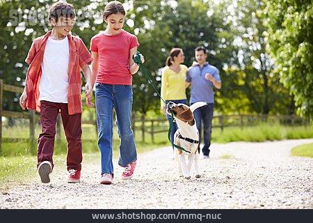 Pets, Walk, Dog, Family
