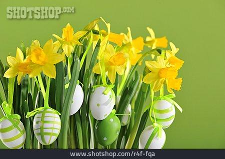 Daffodil, Easter Decoration