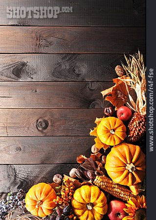 Copy Space, Squash, Thanksgiving, Thanksgiving