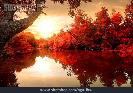 Lake, Autumn, Autumn Landscape