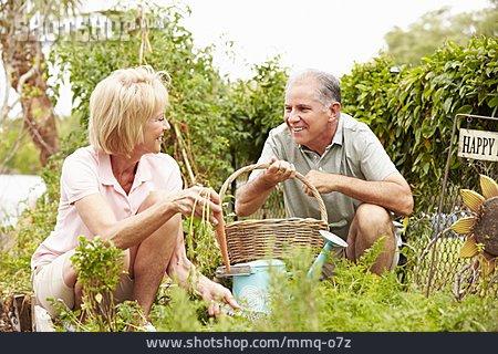Senior, Couple, Garden, Gardening