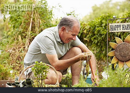 Man, Garden, Gardening