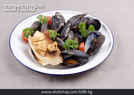 Mussel, Mussel