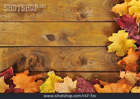 Copy Space, Autumn, Autumn Leaves