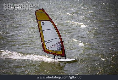 Water Sport, Rhine River, Windsurfer