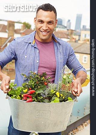 Domestic Life, Harvest, Planting