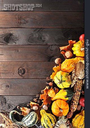 Copy Space, Squash, Thanksgiving, Autumn Decoration