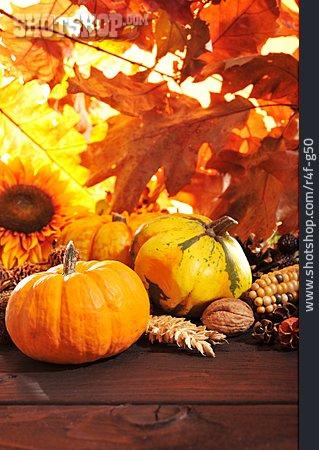 Autumn, Squash, Harvest Festival, Thanksgiving