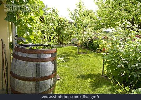 Garden, Rain Barrel