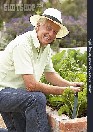 Senior, Gardening