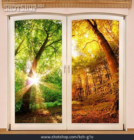 Summer, Autumn, Seasons, Weather Change