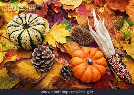 Autumn, Thanksgiving, Autumn Decoration