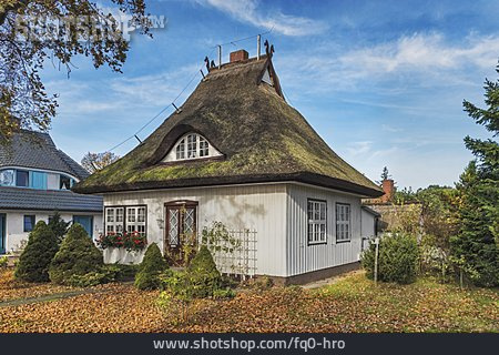 House, Wooden House, Thatch Roof, Prerow