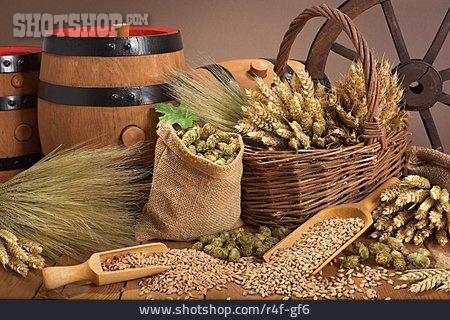 Grain, Hop