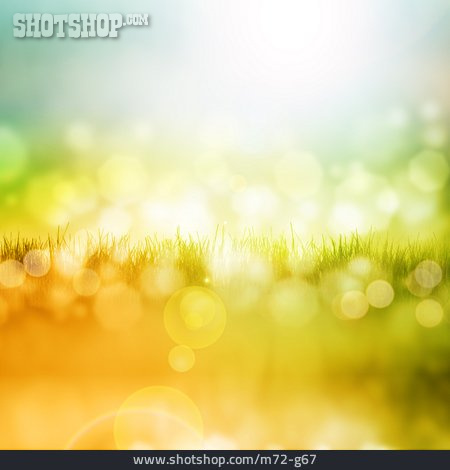 Backgrounds, Nature, Spring
