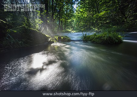 Sunlight, River, Indian Summer