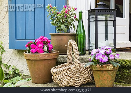 Decoration, Flower Pot, Patio
