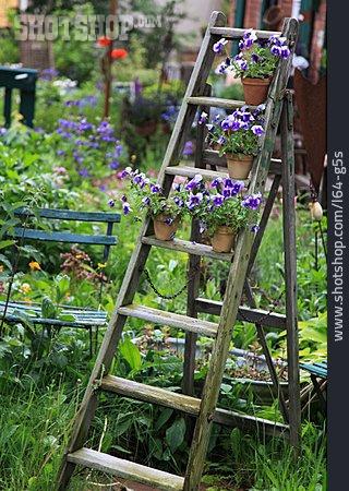 Garden, Flowers, Flower Pot