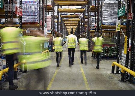 Logistics, Team, Warehouse, Warehouse, Staff