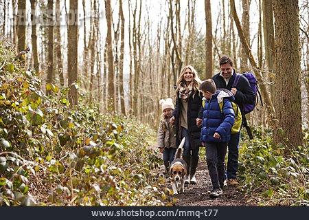 Dog, Hiking, Walk