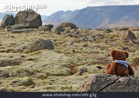 Iceland, Teddy Bear