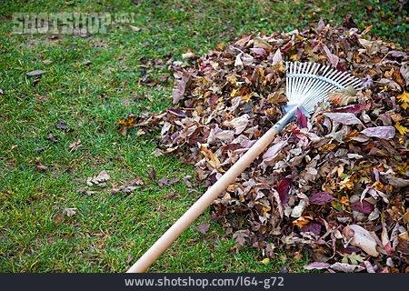 Autumn Leaves, Gardening