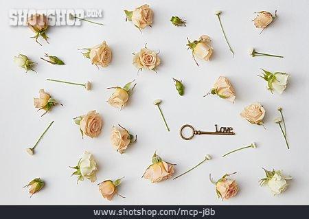 Love, Romantic, Rose