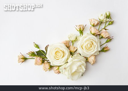 Mourning, Roses, Floristry, Flower Arrangement