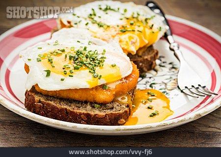 Fried Egg, Chicken Meat, Sandwich