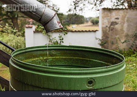 Rainwater, Rain Barrel