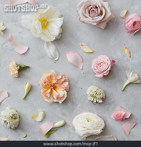 Flowers, Romantic, Pastel Tones
