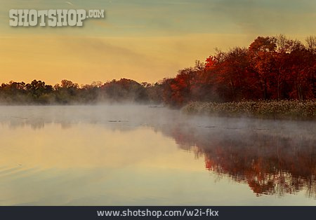 Autumn, Mist