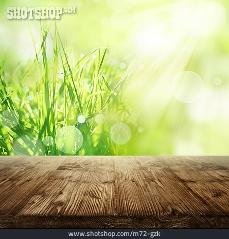 Sunlight, Meadow, Wooden Table