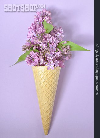 Lilac, Ice Cream Wafer, Floral
