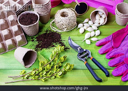 Gardening, Planting, Plant Breeding, Cultivation