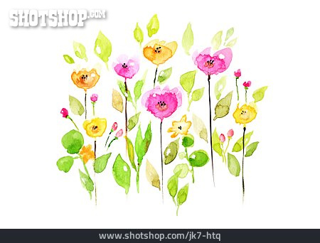 Flowers, Watercolor
