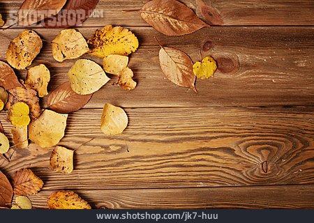Leaves, Autumn, Wood
