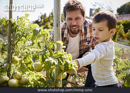 Father, Son, Gardening, Nature Observation