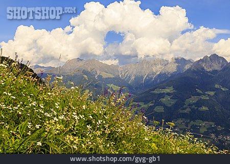 European Alps, South Tyrol, Alp