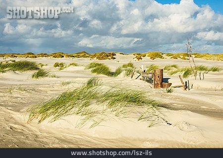 Dune, Amrum